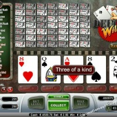 Deuces Wild 50 Hands